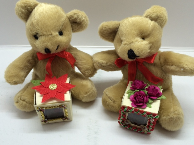 Teddy Bear Cube Project