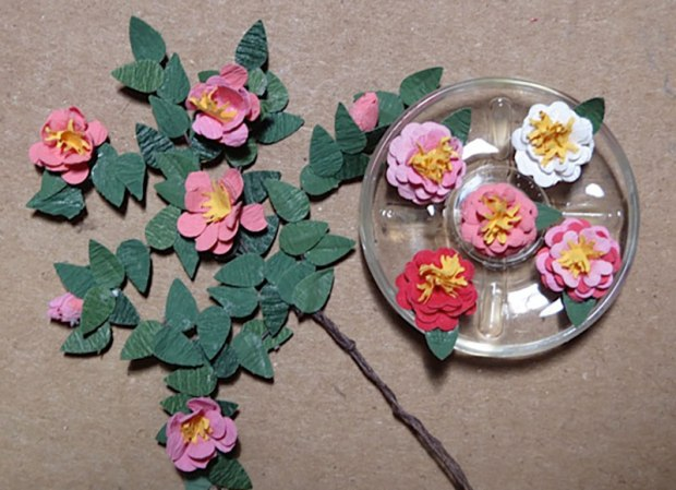 Camellias in a bowl
